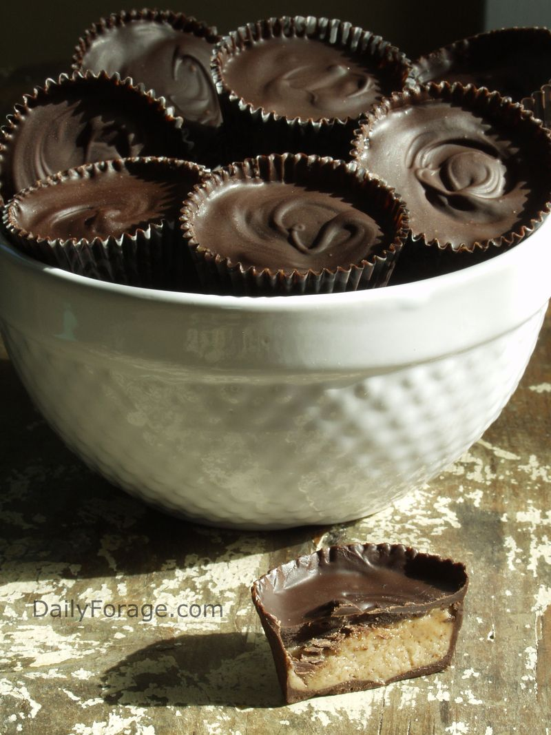 Dark Chocolate Almond Butter Cups - Encased Cups